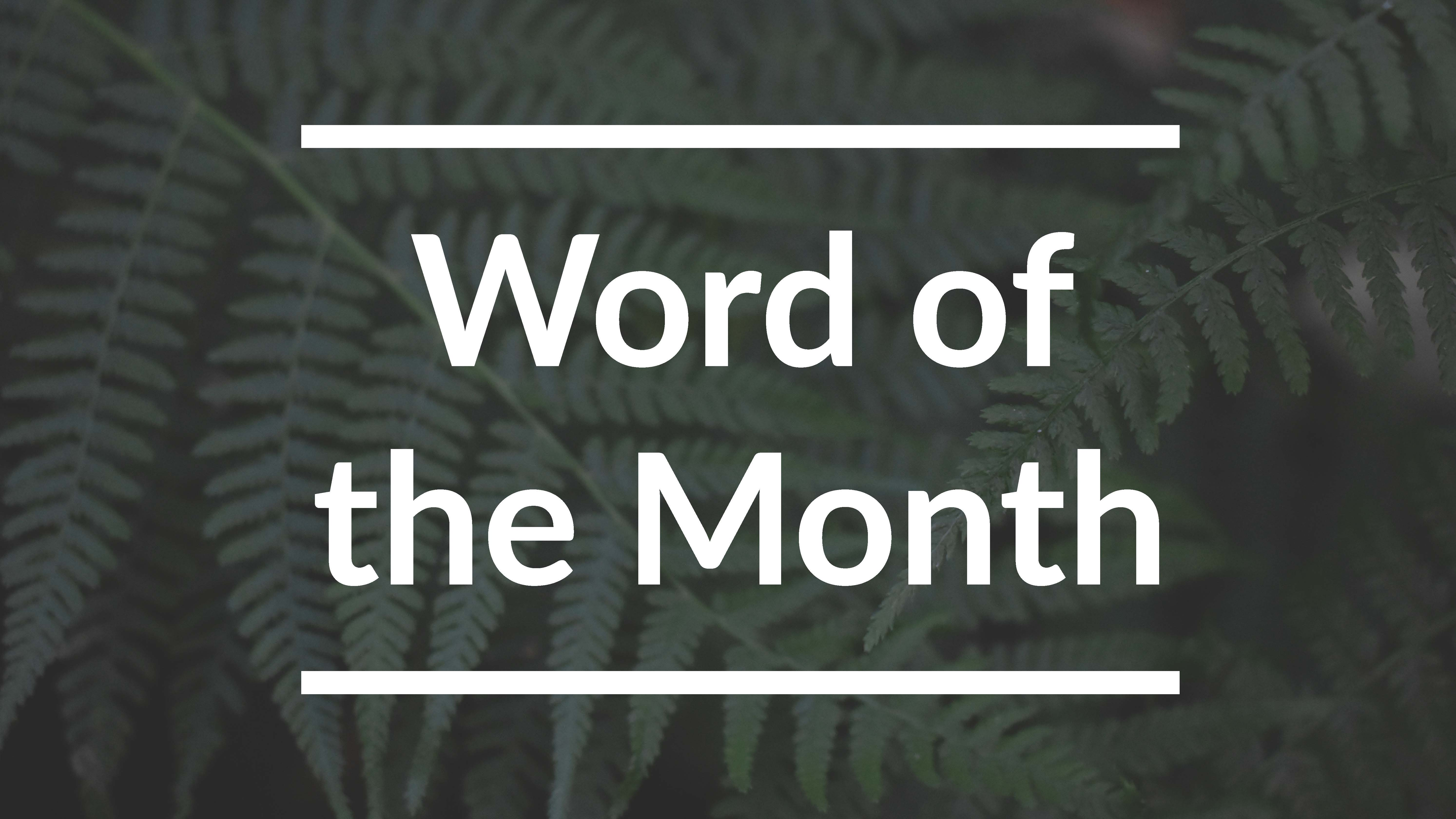 Nooksack Monthly Word for January
